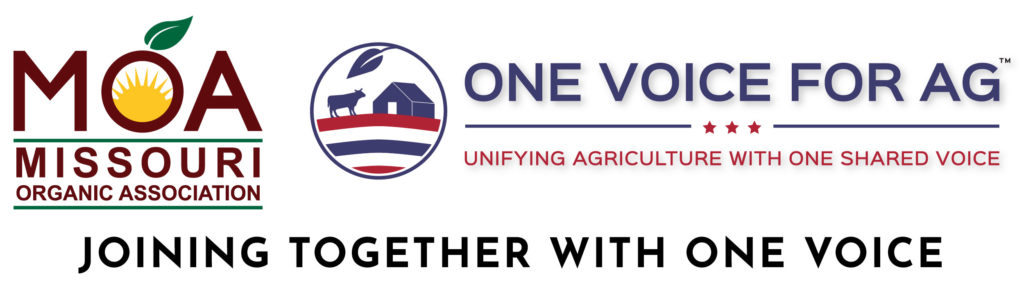 Joining Together with One Voice